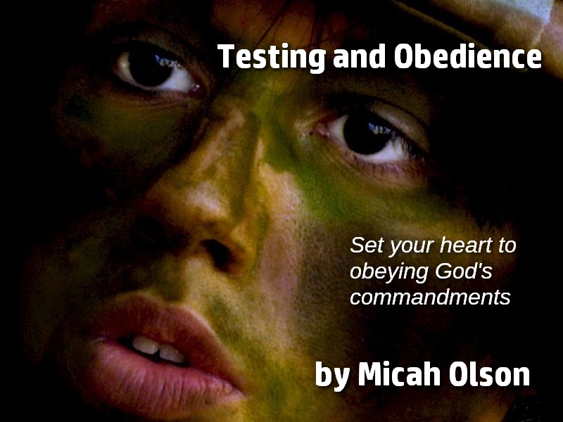 Testing and Obedience