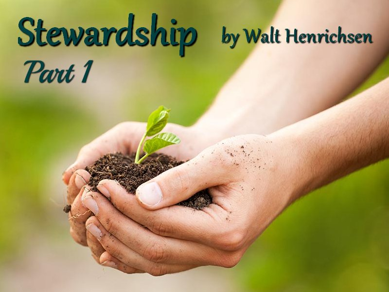 Stewardship Part One