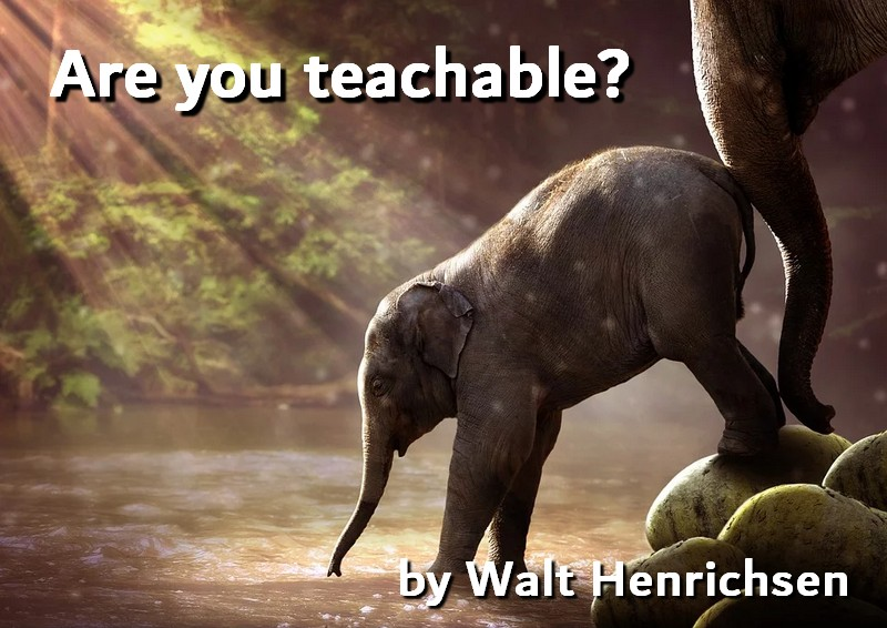 Are you teachable?